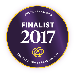 2017 RCA Showcase Awards