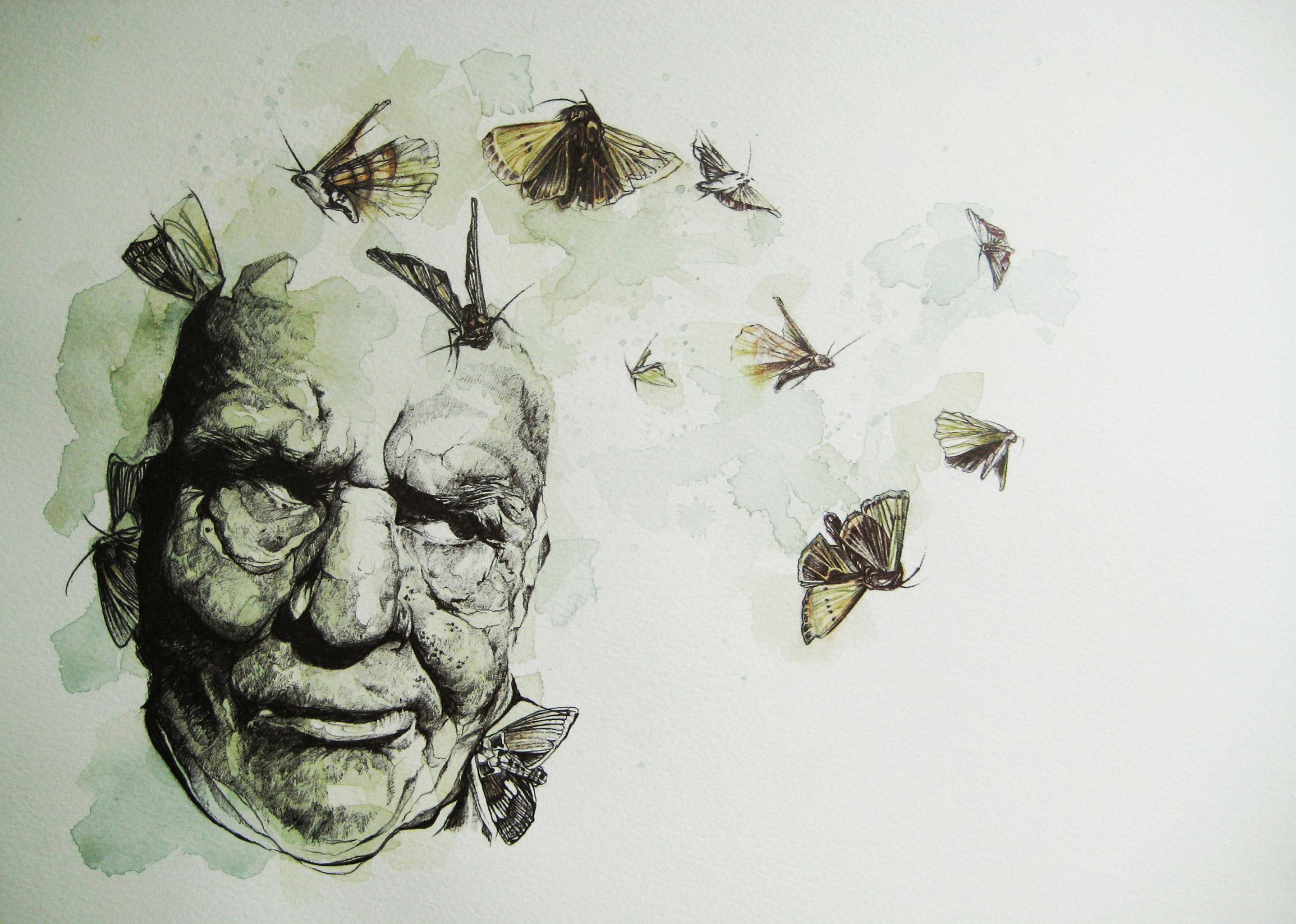 Moth eaten.jpg