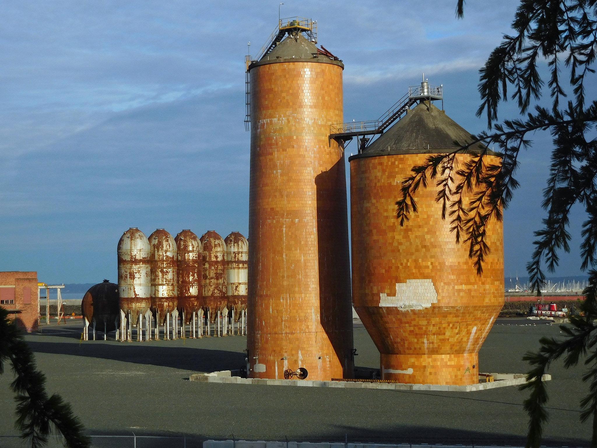georgia pacific pulp mill.jpg