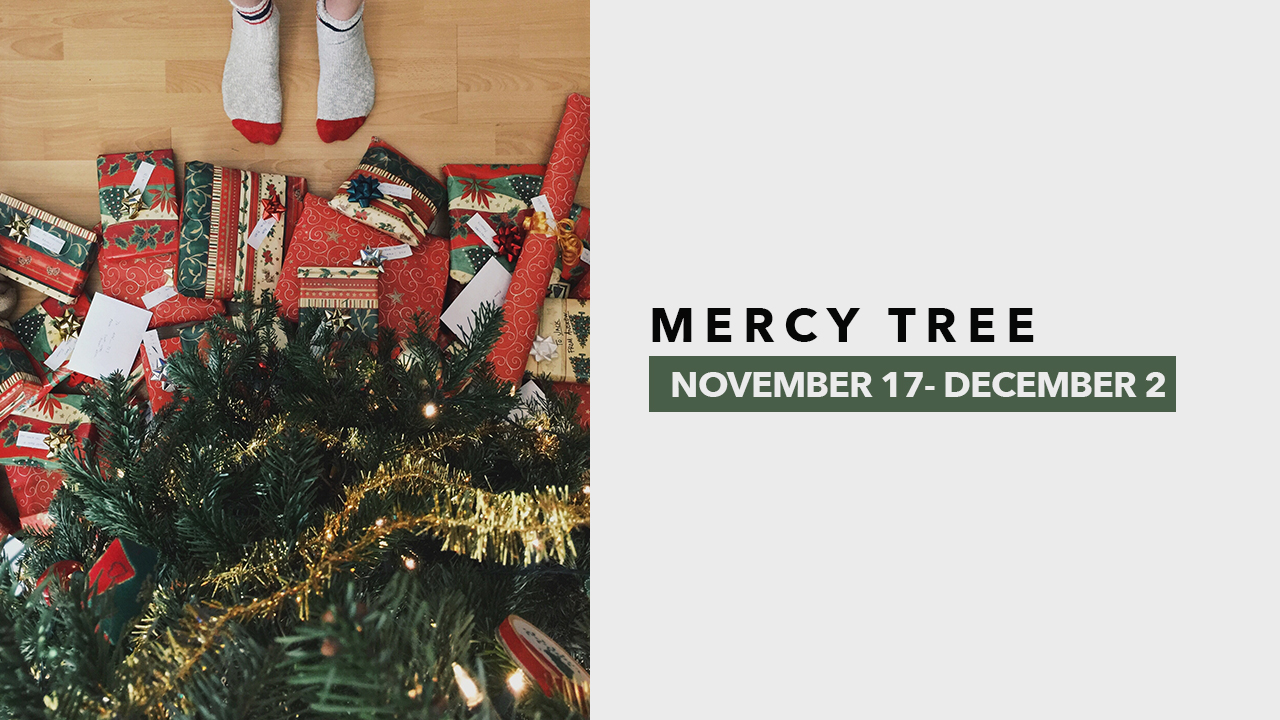 Mercy Tree.jpg