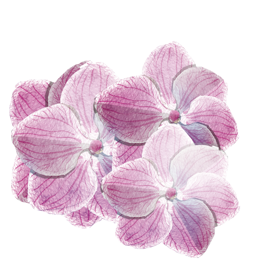 pink flowers.png