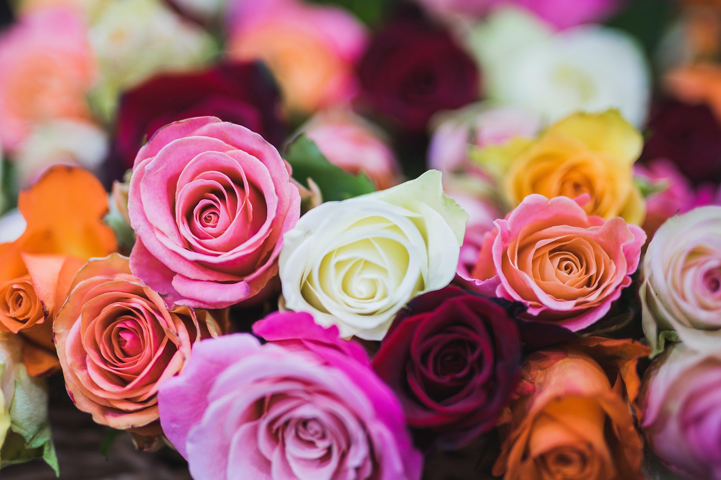 arrangement-beautiful-bloom-714918.jpg