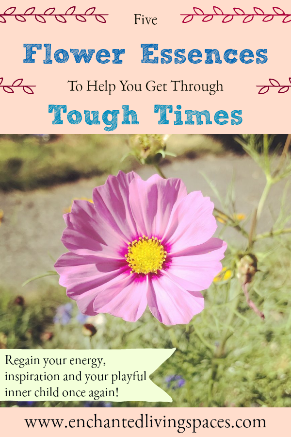 flower essences for tough times