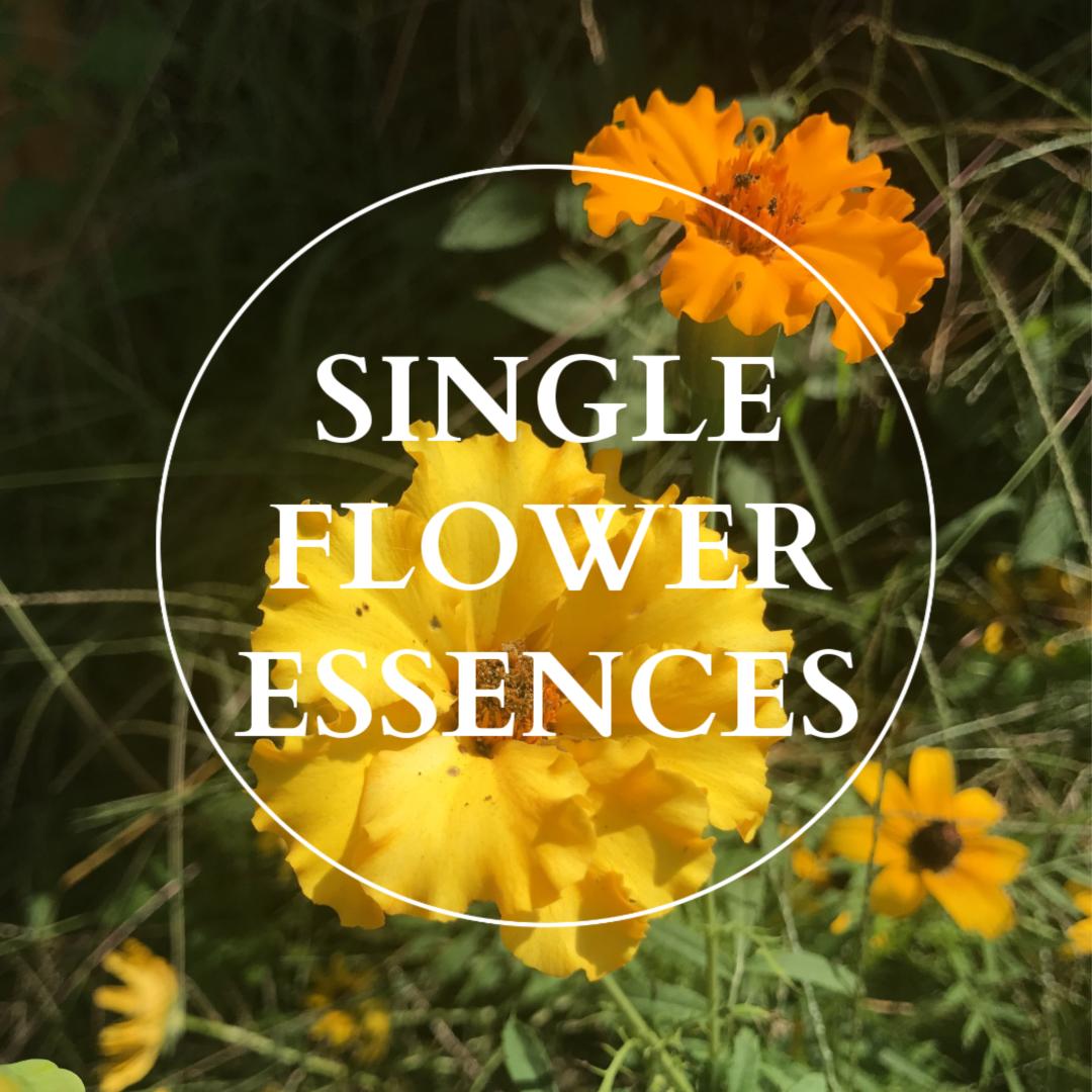 Flower Essence Single.png
