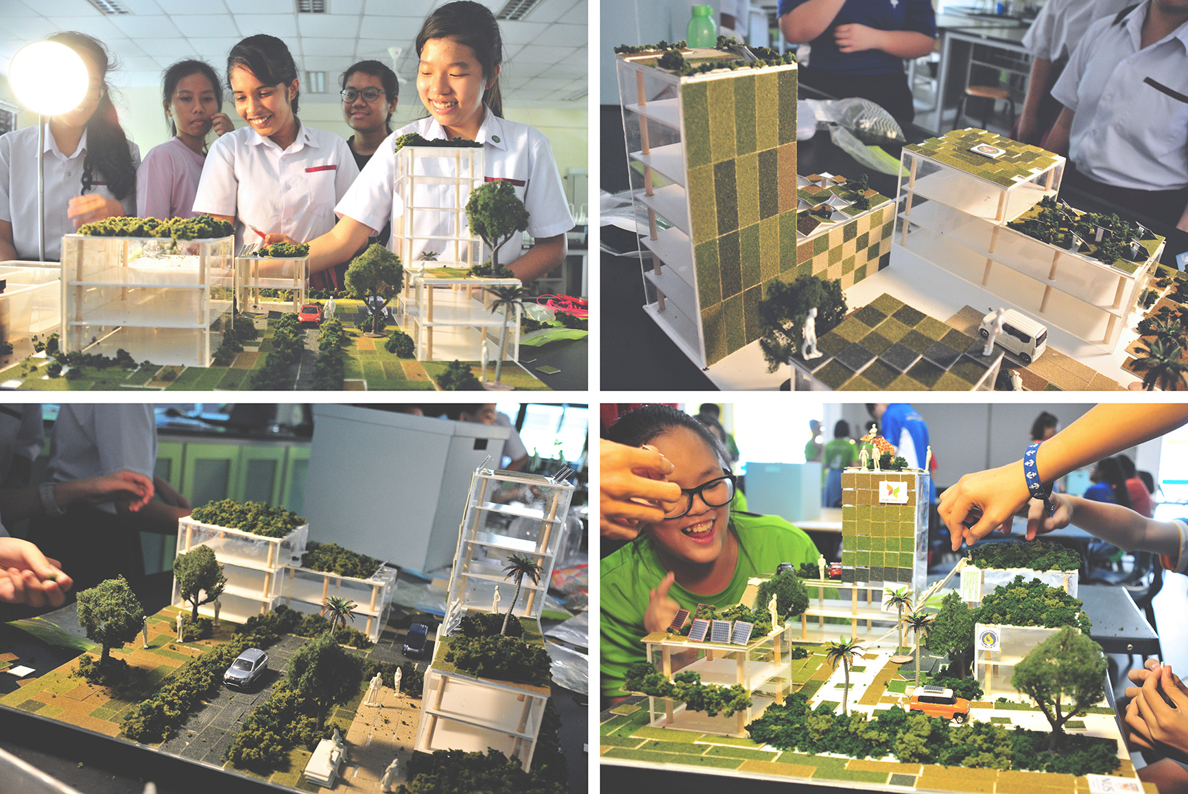 Urban Greenery Workshops for Primary and Secondary Schools in Singapore - DR. TAN CHUN LIANG