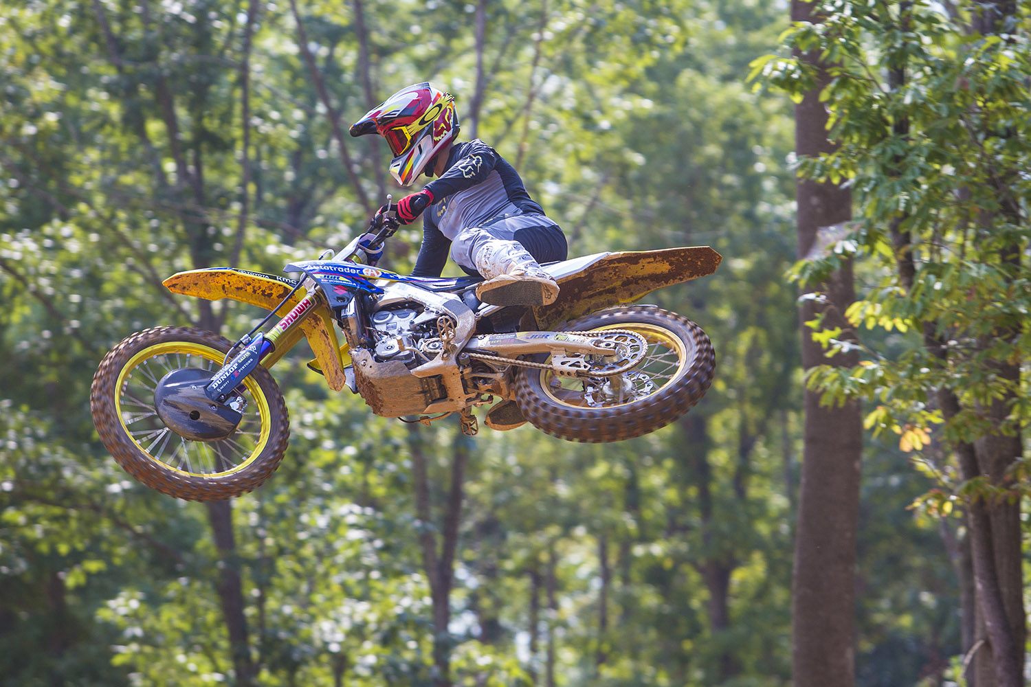 Chad Reed Action.jpg
