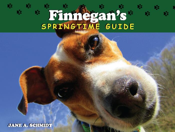 Finnegan's Springtime  Guide_cover.jpg