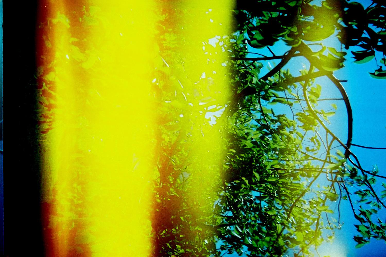 abstract05.jpg