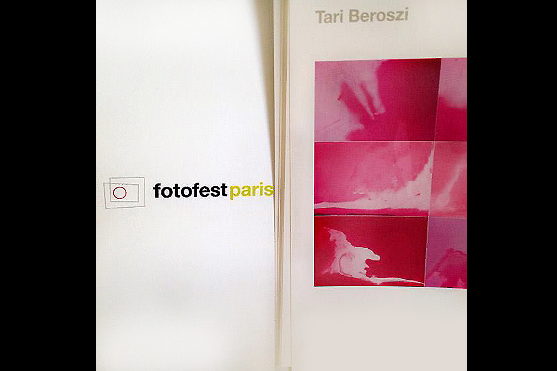 Pink Landscapes. Lens Culture FotoFest, Paris, France, 2012
