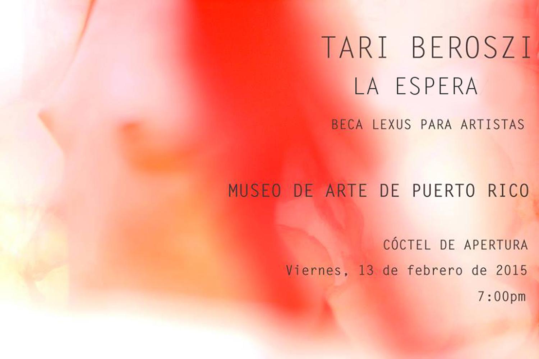 Lexus Grants for Artists Winner. Museum of Art of Puerto Rico, 2015