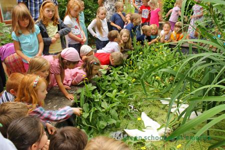 SharonDanks_GreenSchoolyardsAmerica_16.jpg