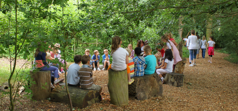 An outdoor lesson in progress at The Coombes School, within a child-planted forest.  Photo: © Sharon Danks