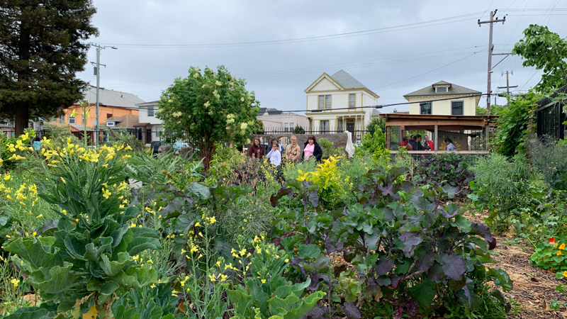 Conference participants visited the beautiful garden at Hoover Elementary School in Oakland, CA.