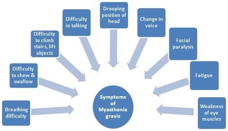 myasthenia-gravis symptoms.jpg