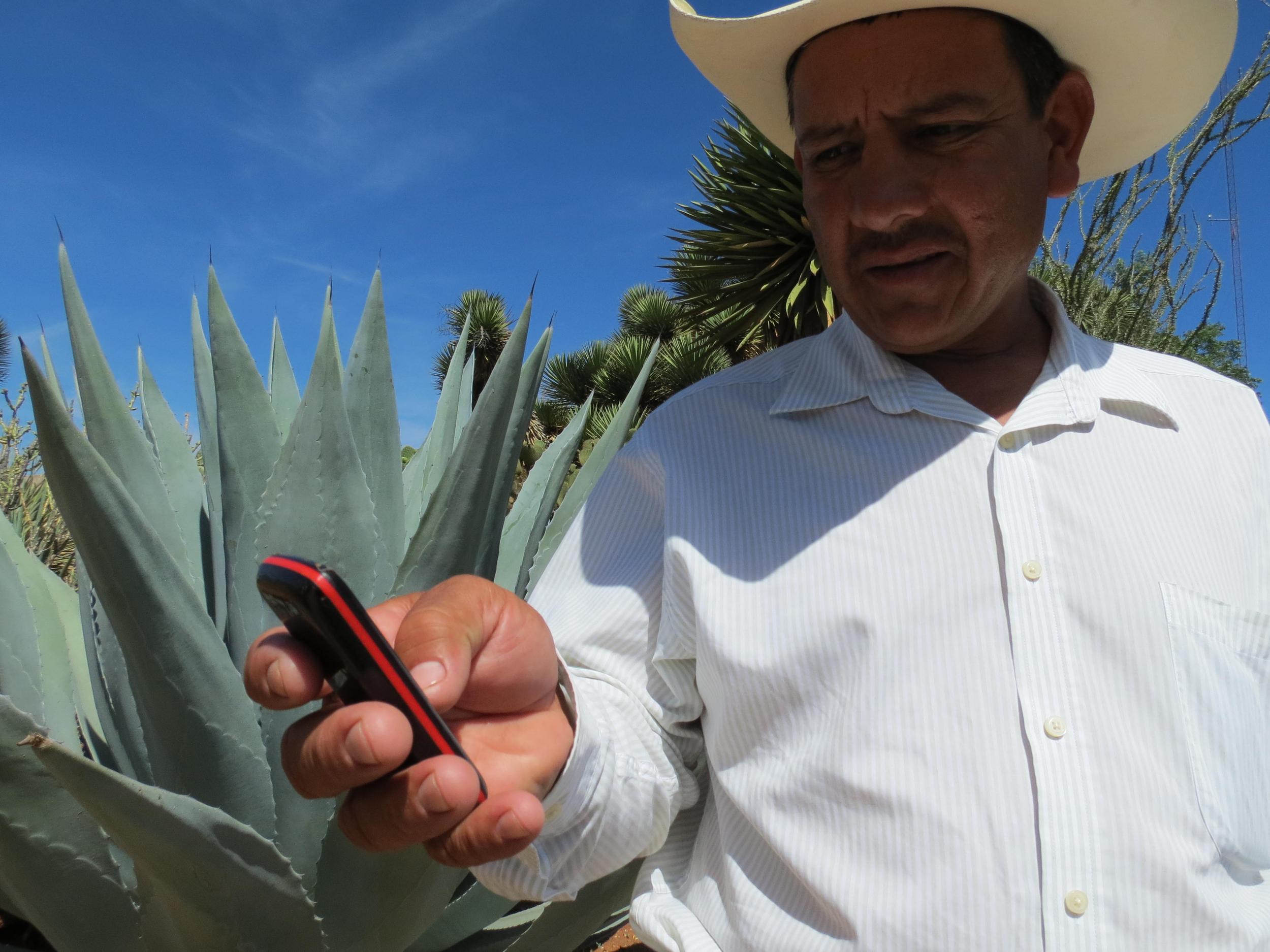 ¿Eres productor? - Con Extensio, recibe información de clima, buenas prácticas, insumos y precios de venta para tu cultivo directamente en tu teléfono.¡Conoce más aquí!