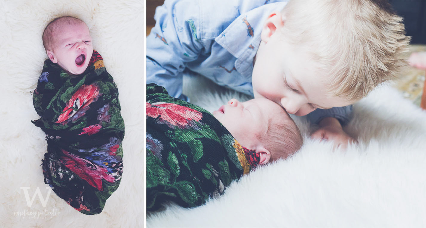Miss Charlotte Jean | Newborn Photographer | Family Photographer | Portland, OR | Whitney Petretto Photography