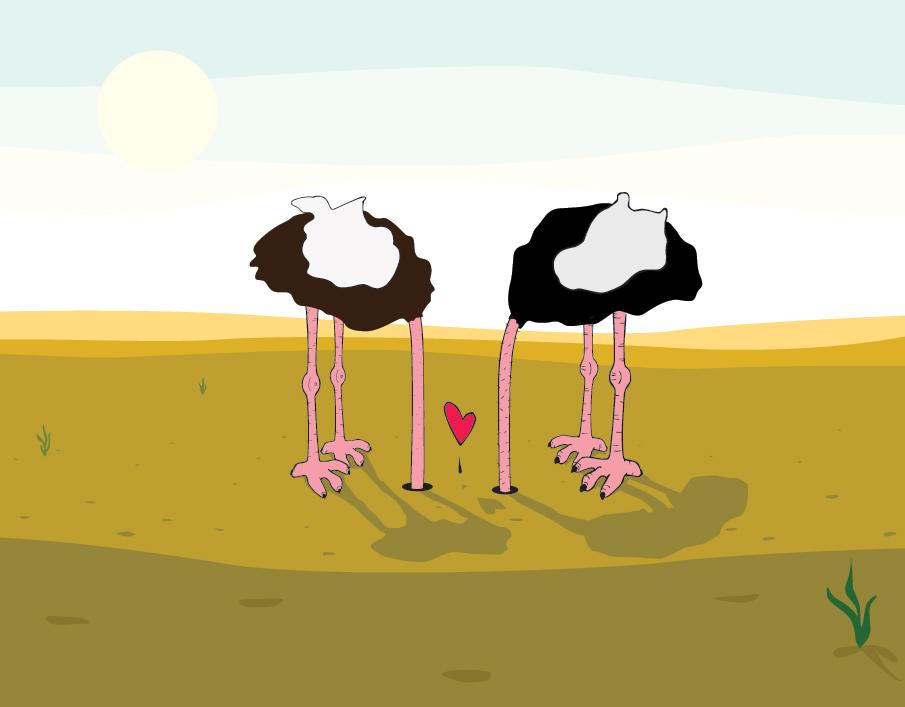 Ostriches_905.jpg