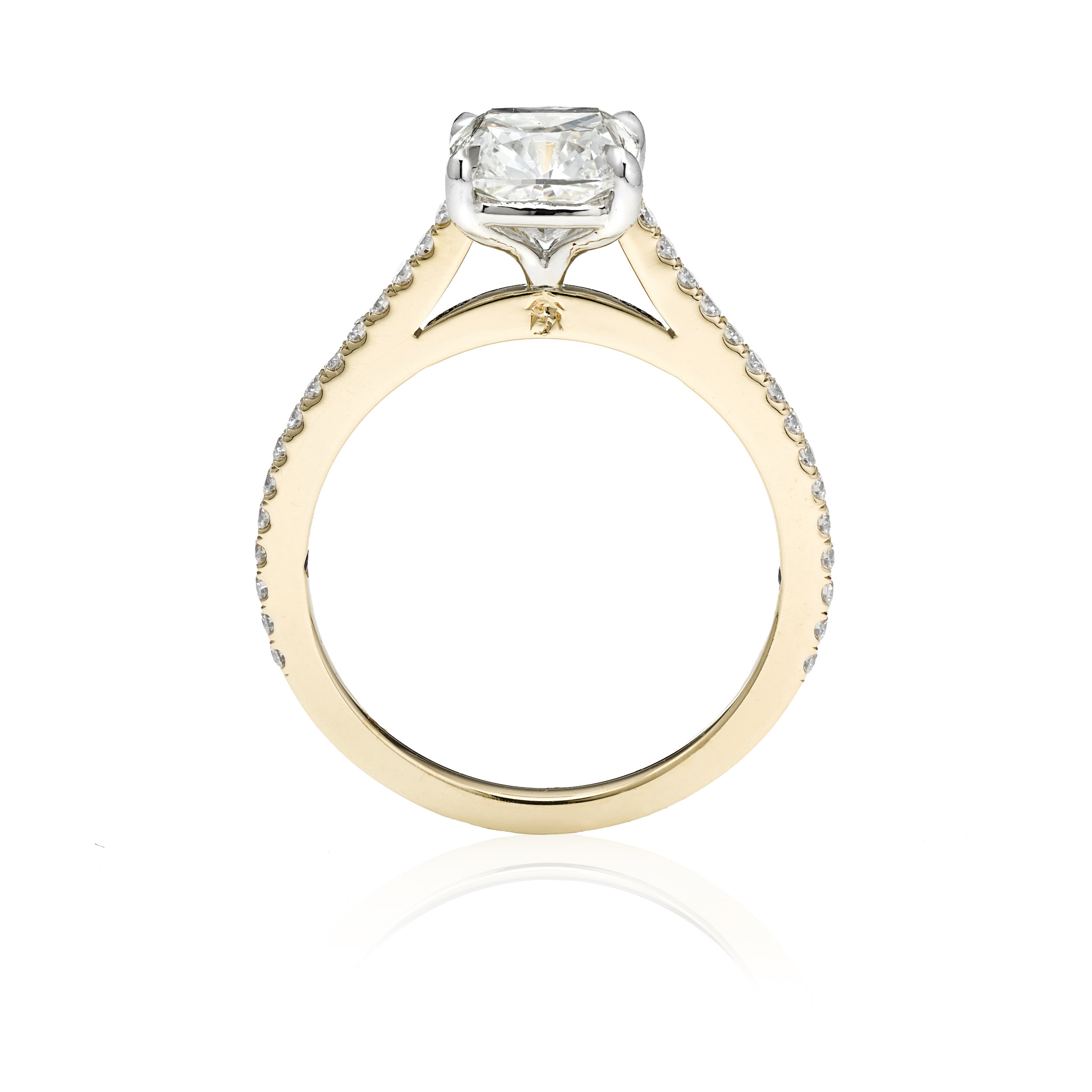 Ring Front Profile.jpg