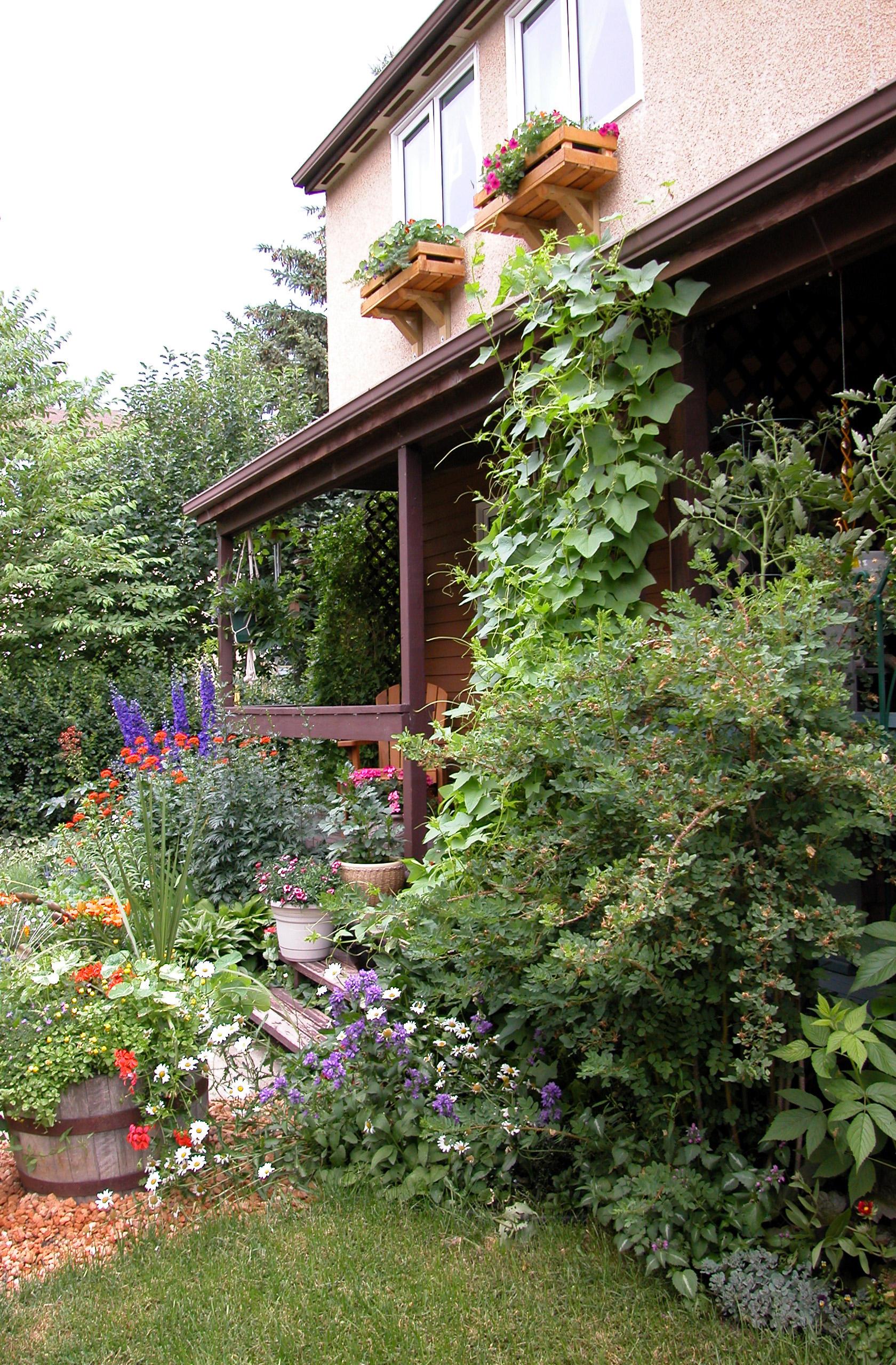 SHC Gardens 4.jpg
