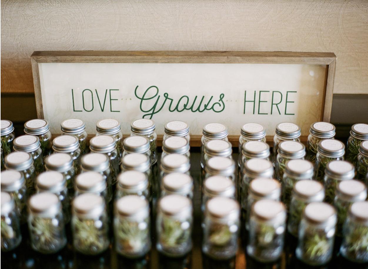 Natural, Organic Vegan Wedding _ wedding favors.png