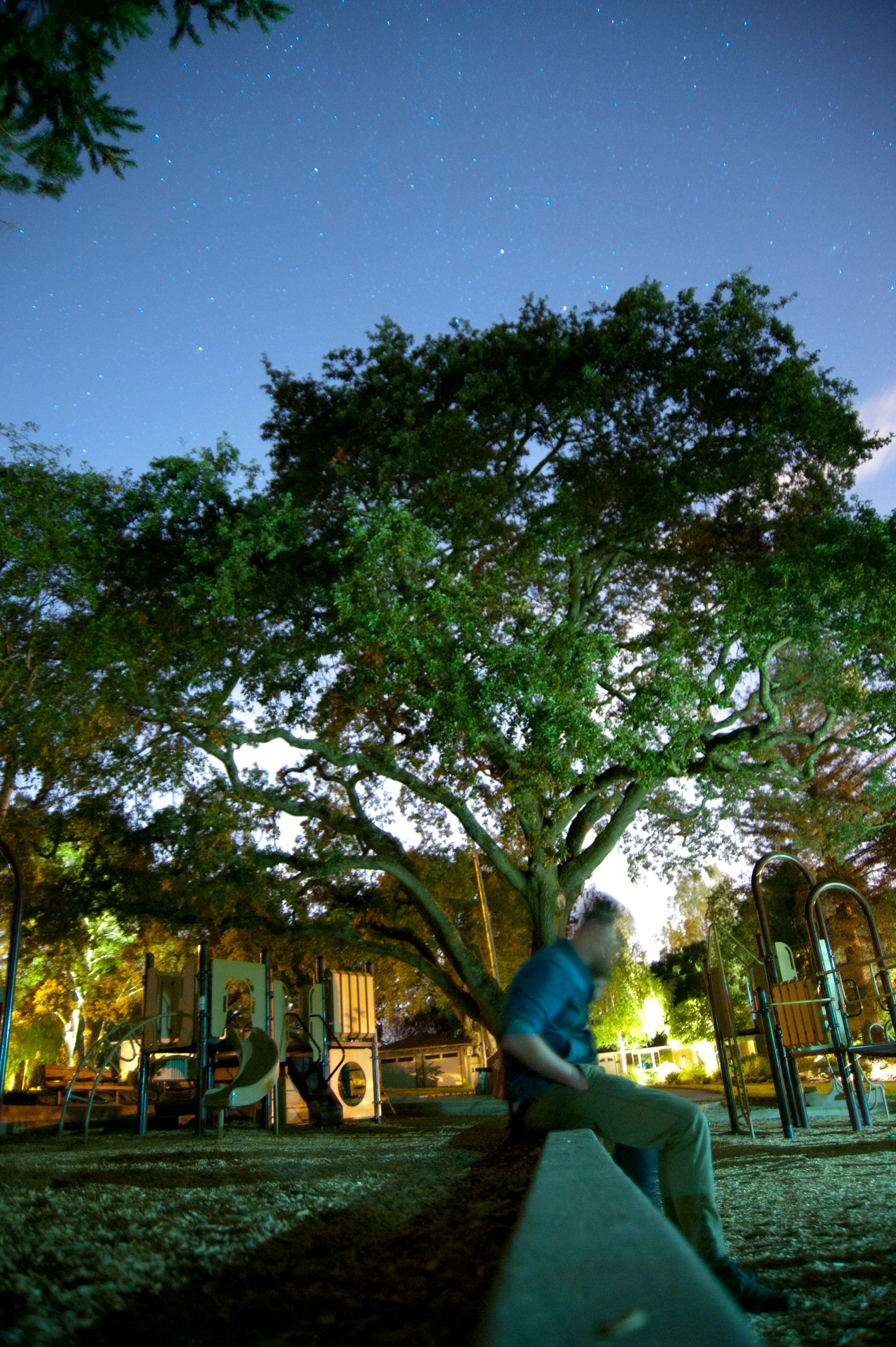 Blurred Face under a Tree.jpg