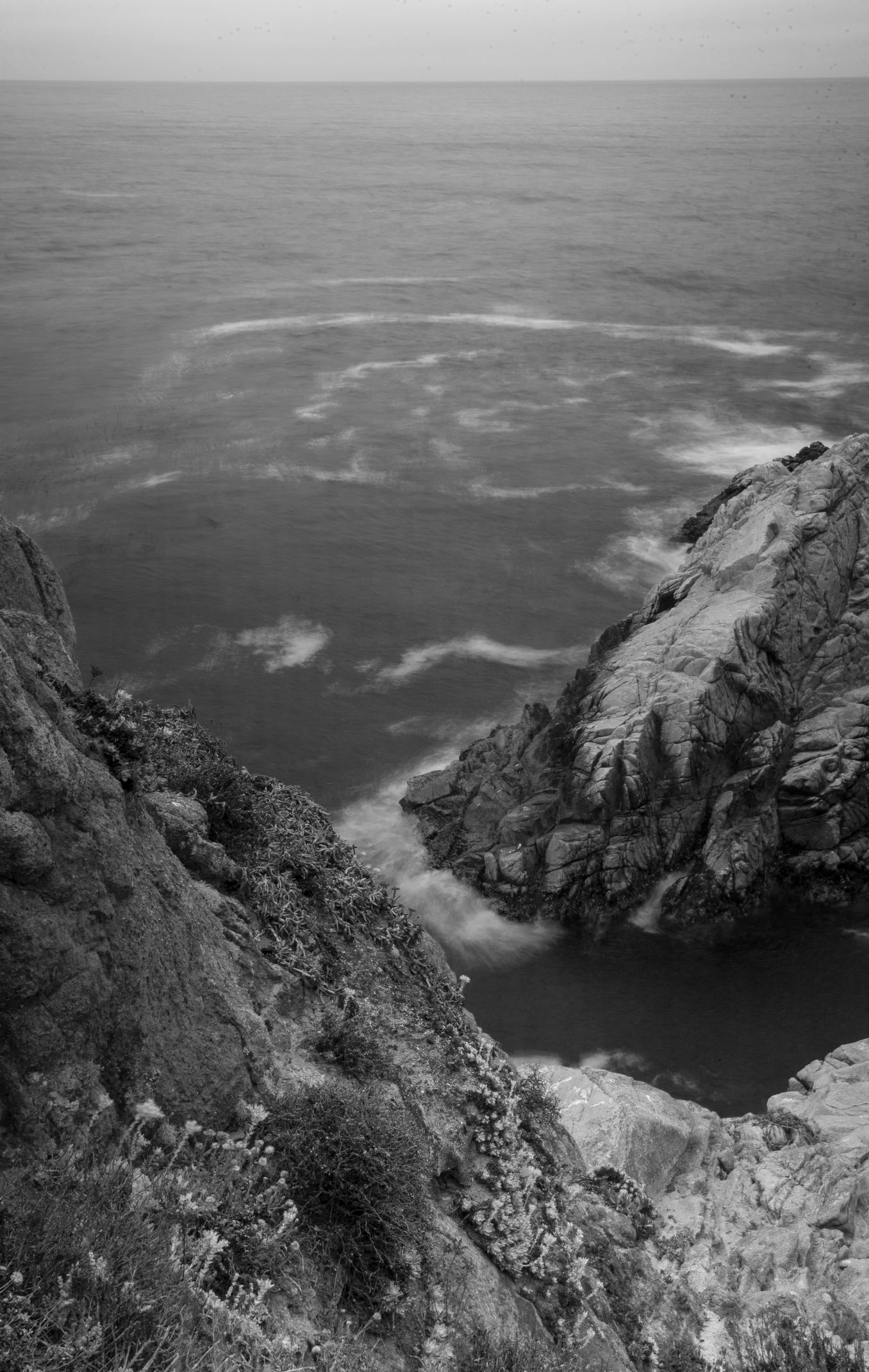 BW1 Point Lobos.jpg