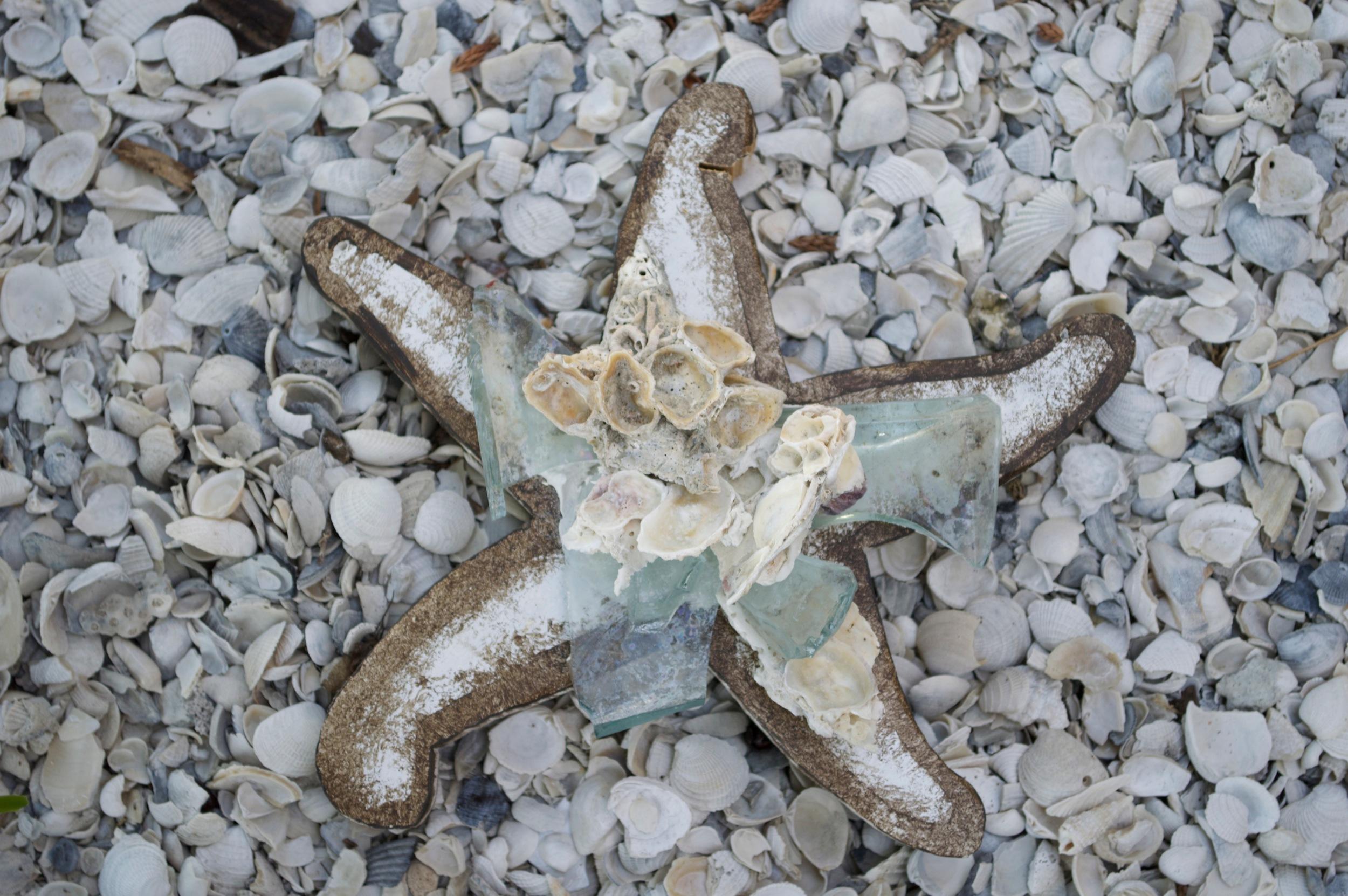 "Beach Art - Med. Star Fish - wood, glass, shells - 1"" thick, 8"" wide - $24"