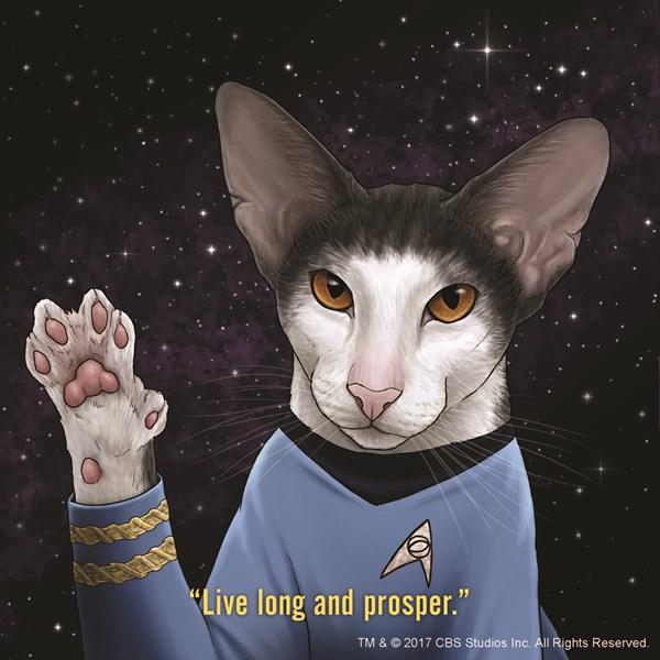 Star Trek Cats by Jenny Parks