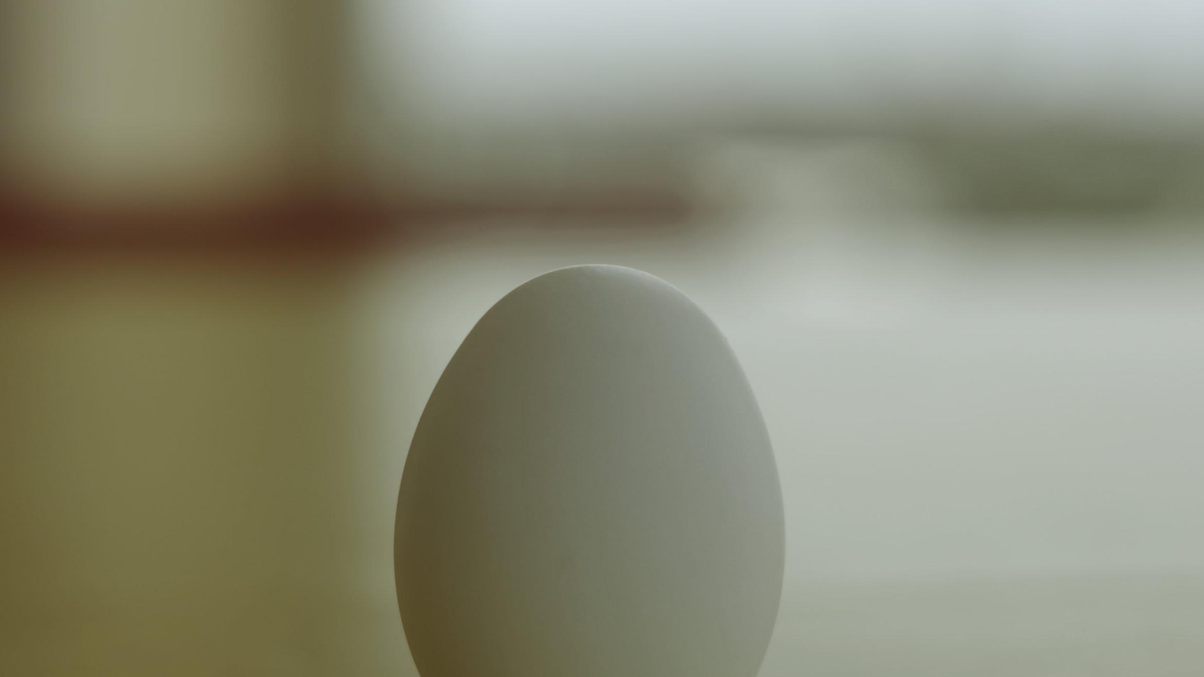 EGG -