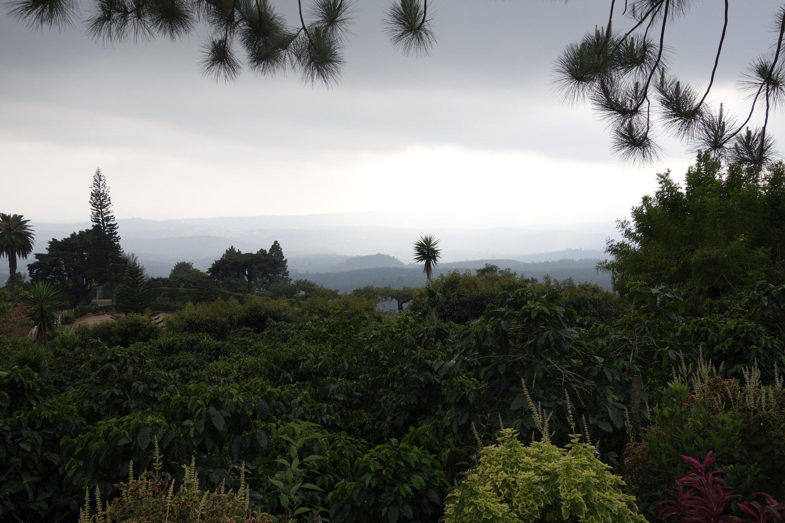 El Salvador - Las Ranas2.jpg