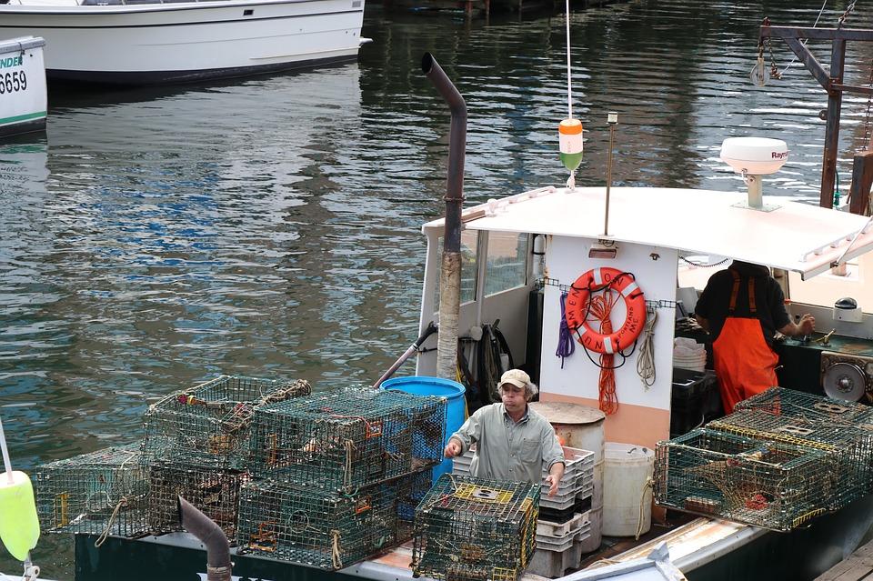 lobster-traps-2759178_960_720.jpg