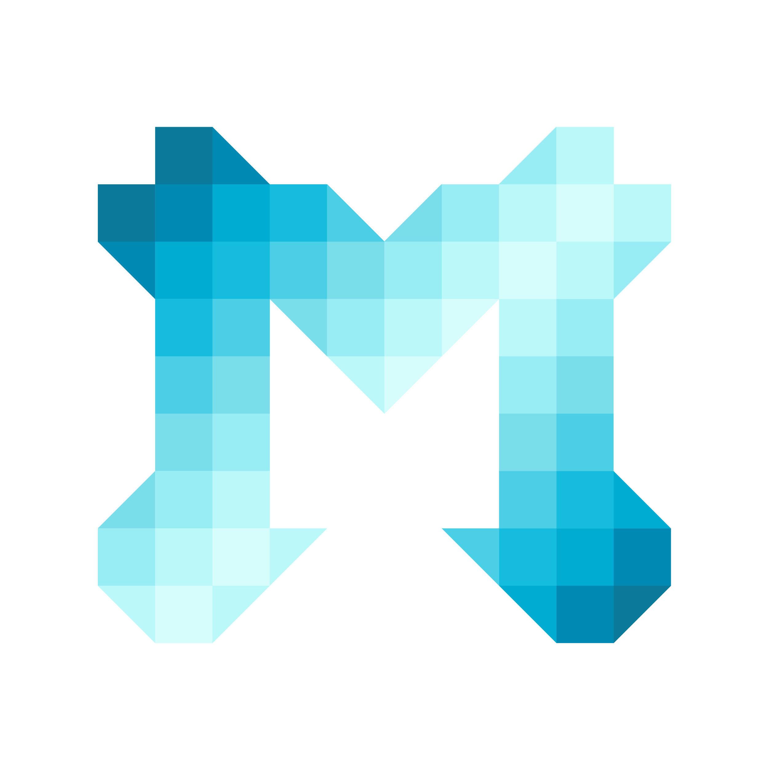 Pixel M-02.jpg