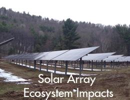 Solar Array Ecosystem Impacts