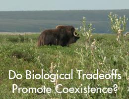 Biological tradeoffs.jpg