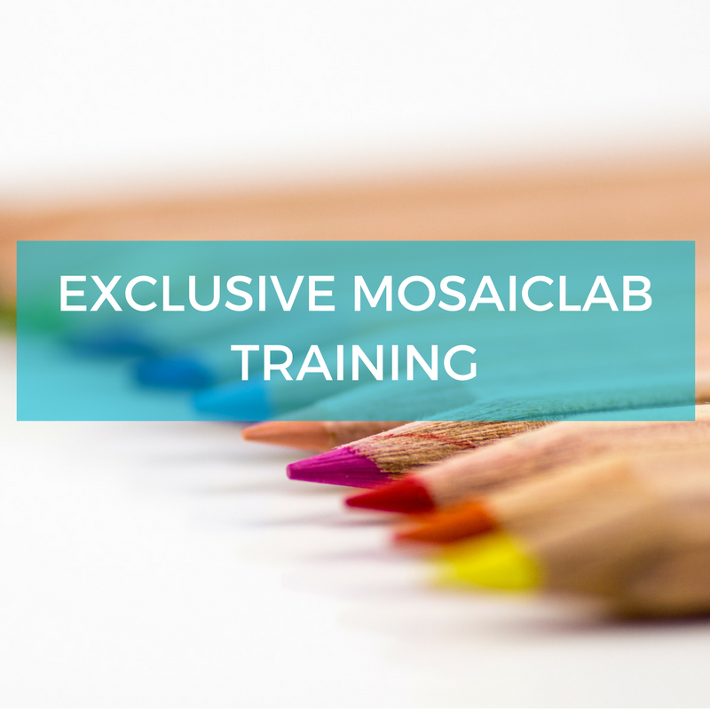 MosaicLAB exclusive engagement training