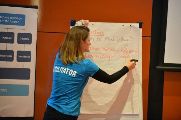 ADvisory committees facilitators consultants - chair