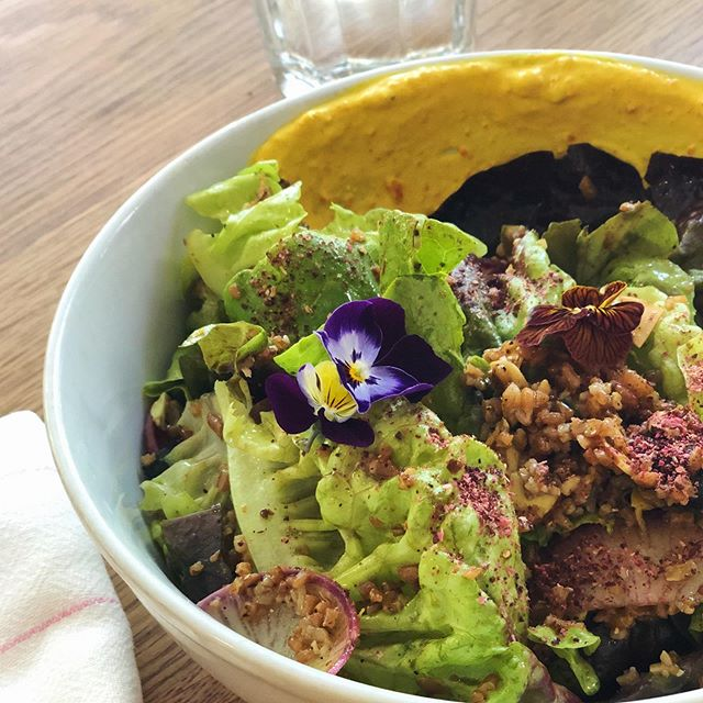 Taste the rainbow #nutrientrich #edibleflowers #thelondonplane #salad #eatyourgreens #watermelonradish #gemlettuce #vsco #VSCOcam