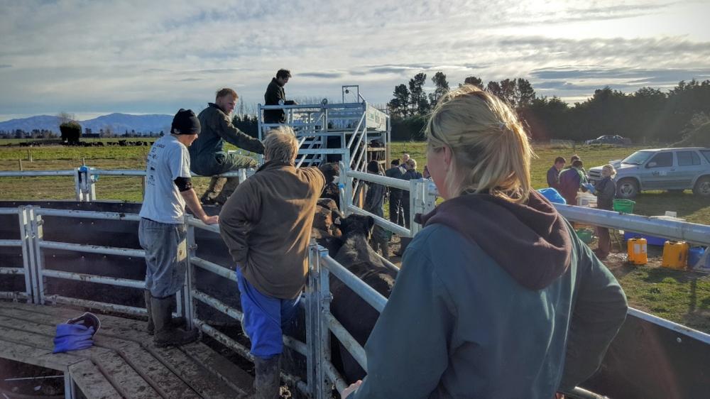 Kintore Farm's people