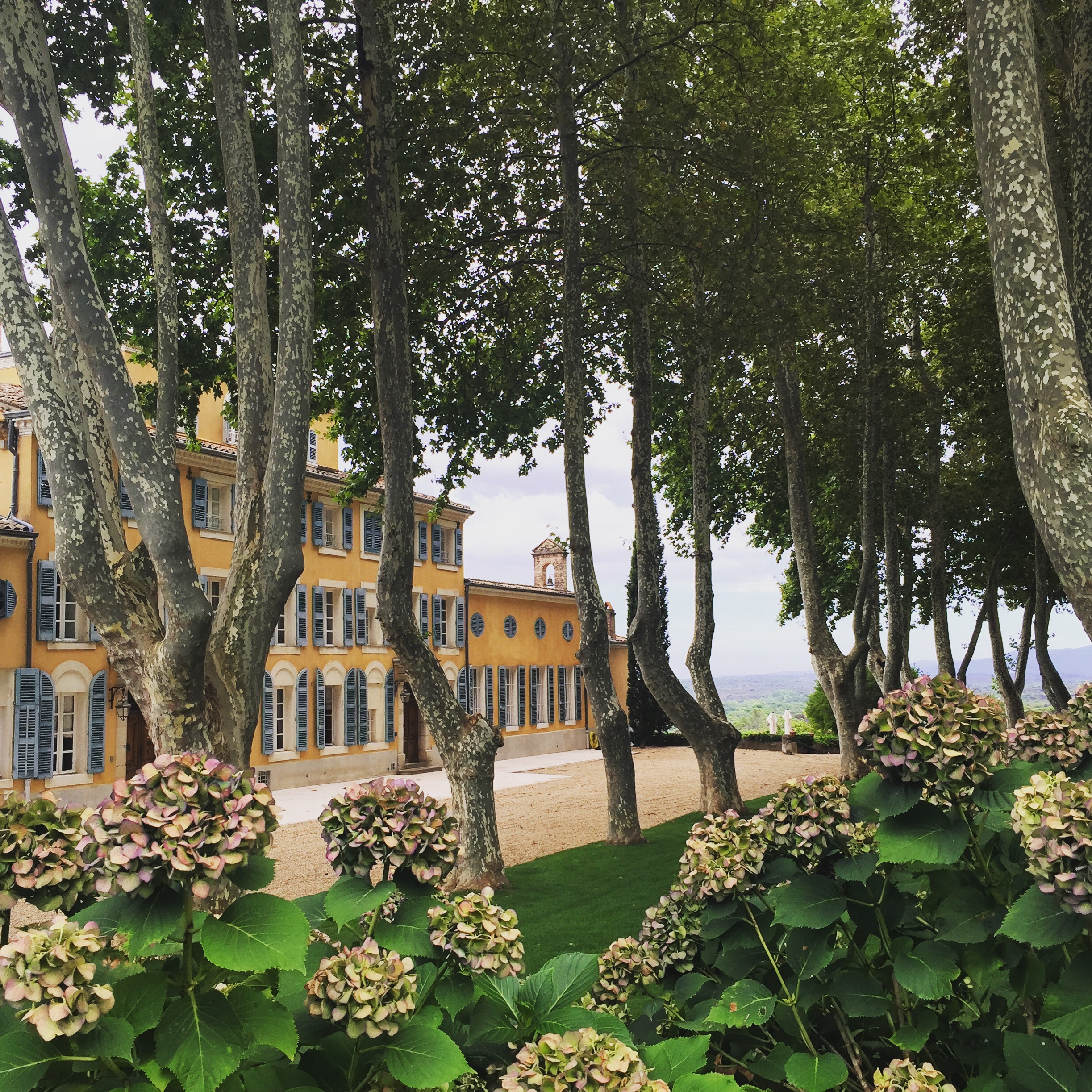The lovely estate of Chateau D'Escalans