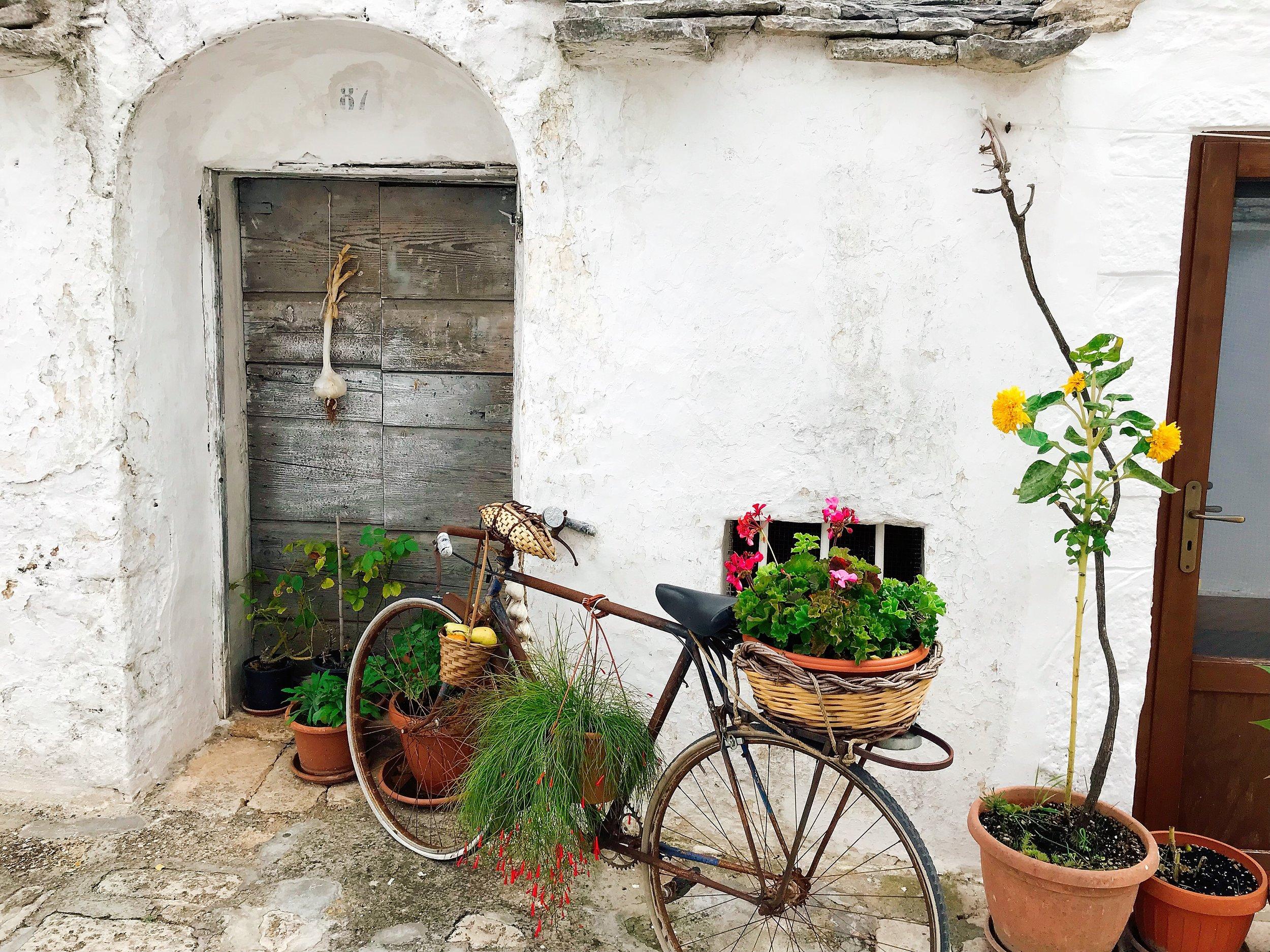 Alberobello- Isn't their house the absolute cutest?