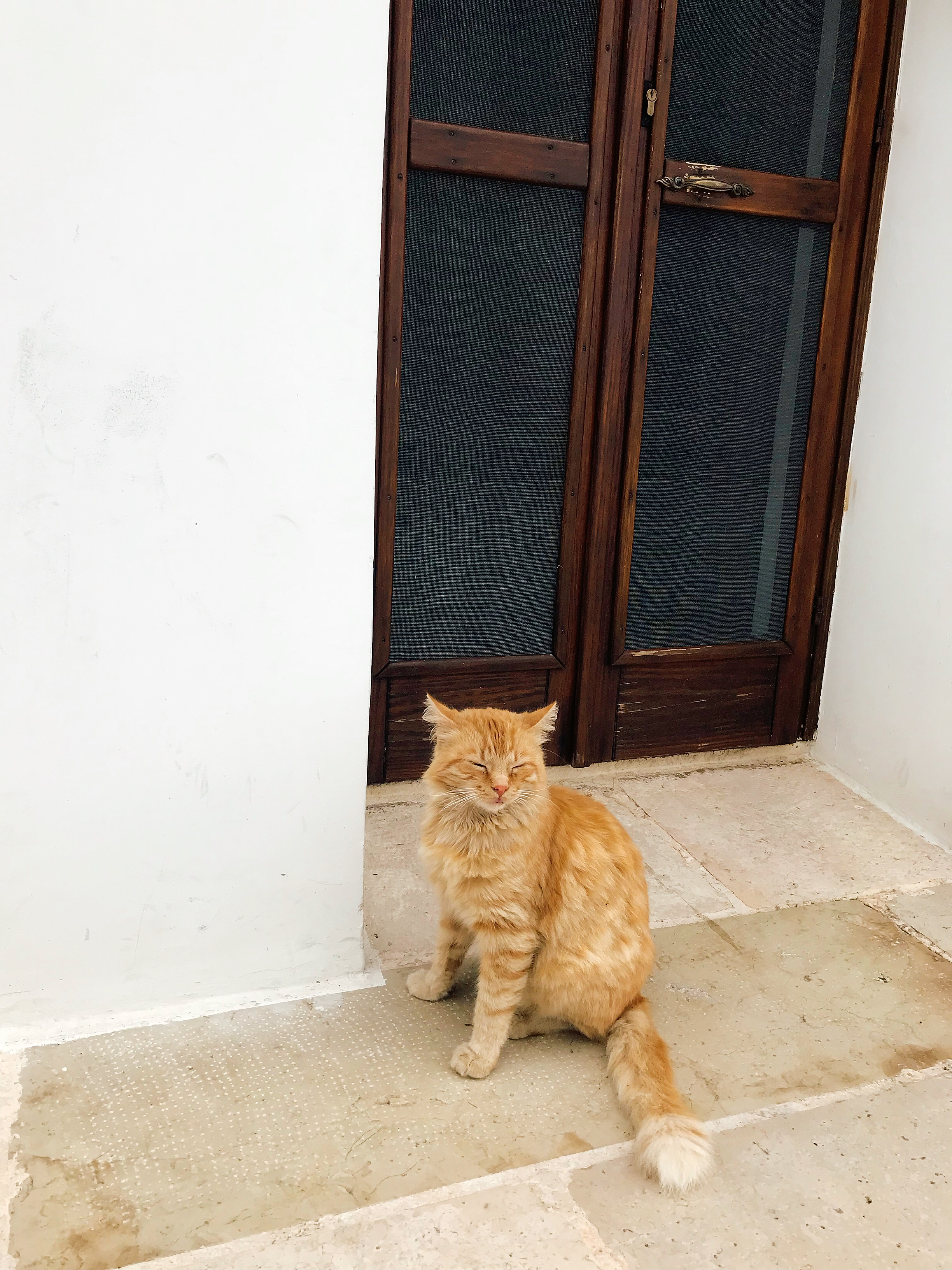 Alberobello- Clearly he is not a fan of having his picture taken