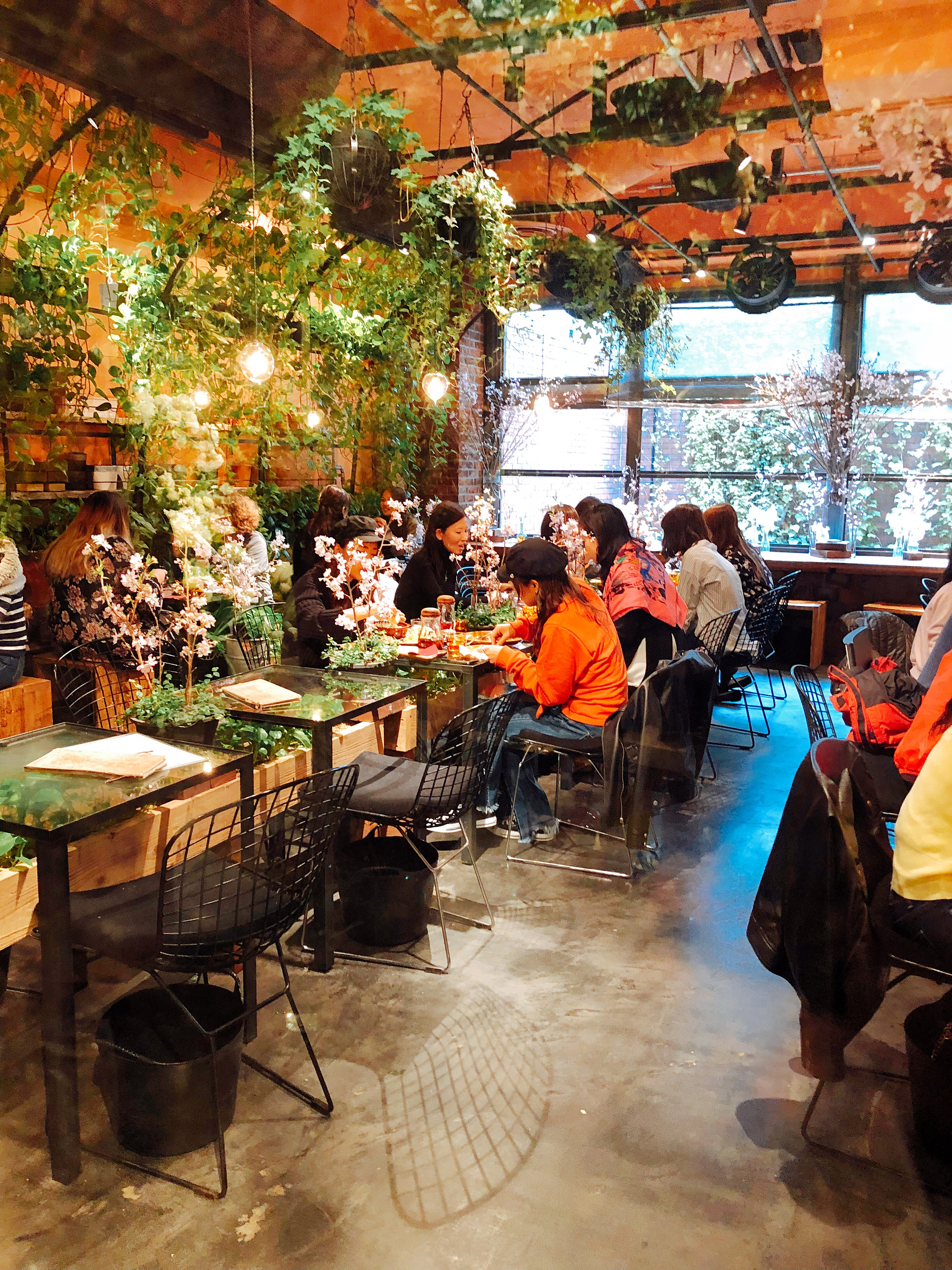 Inside the Aoyama Flower Market Tea House
