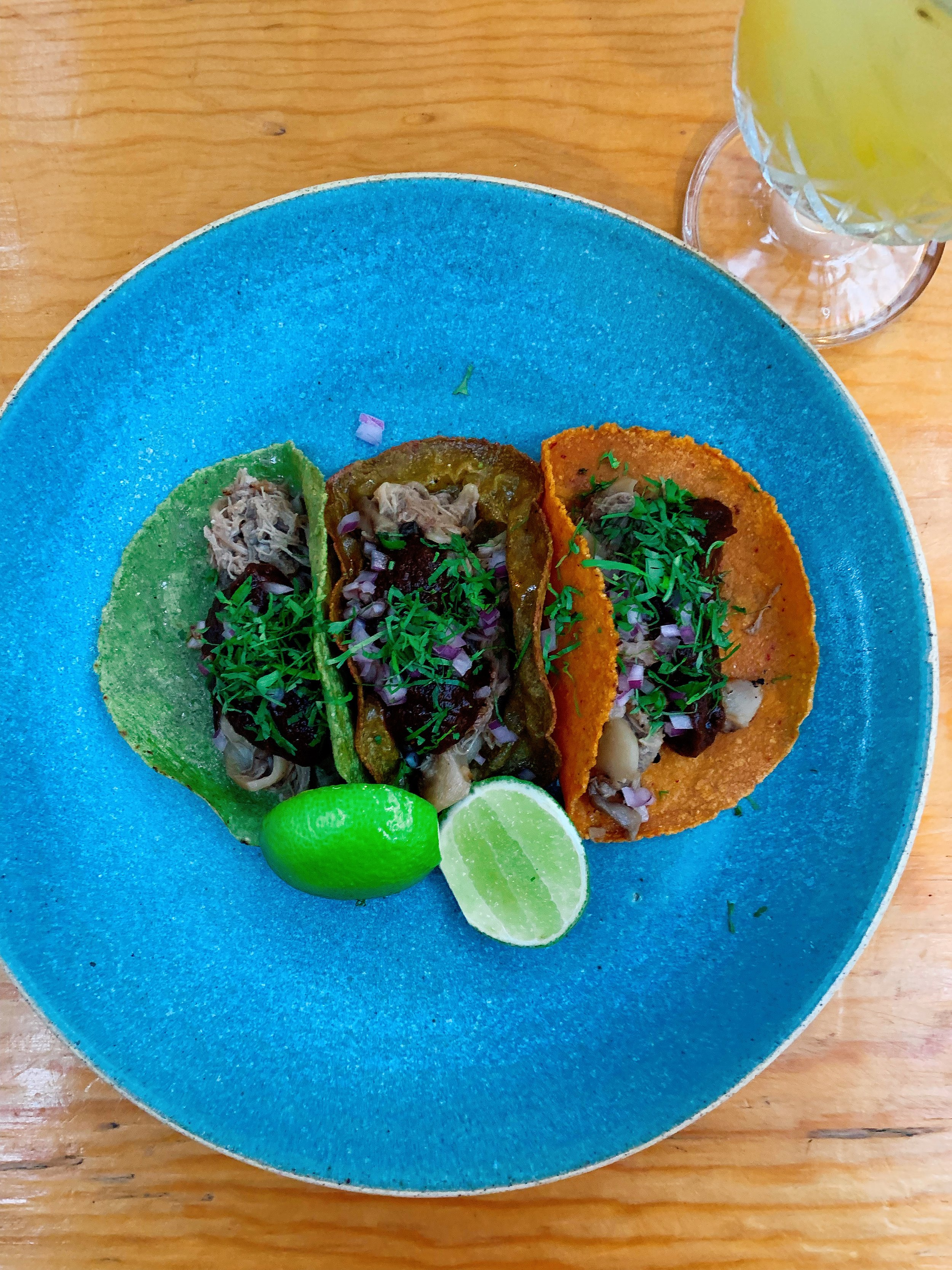 Duck Carnitas And Mushrooms | Handmade Tortilla With Pasilla Chili Sauce + Purple Onion + Coriander