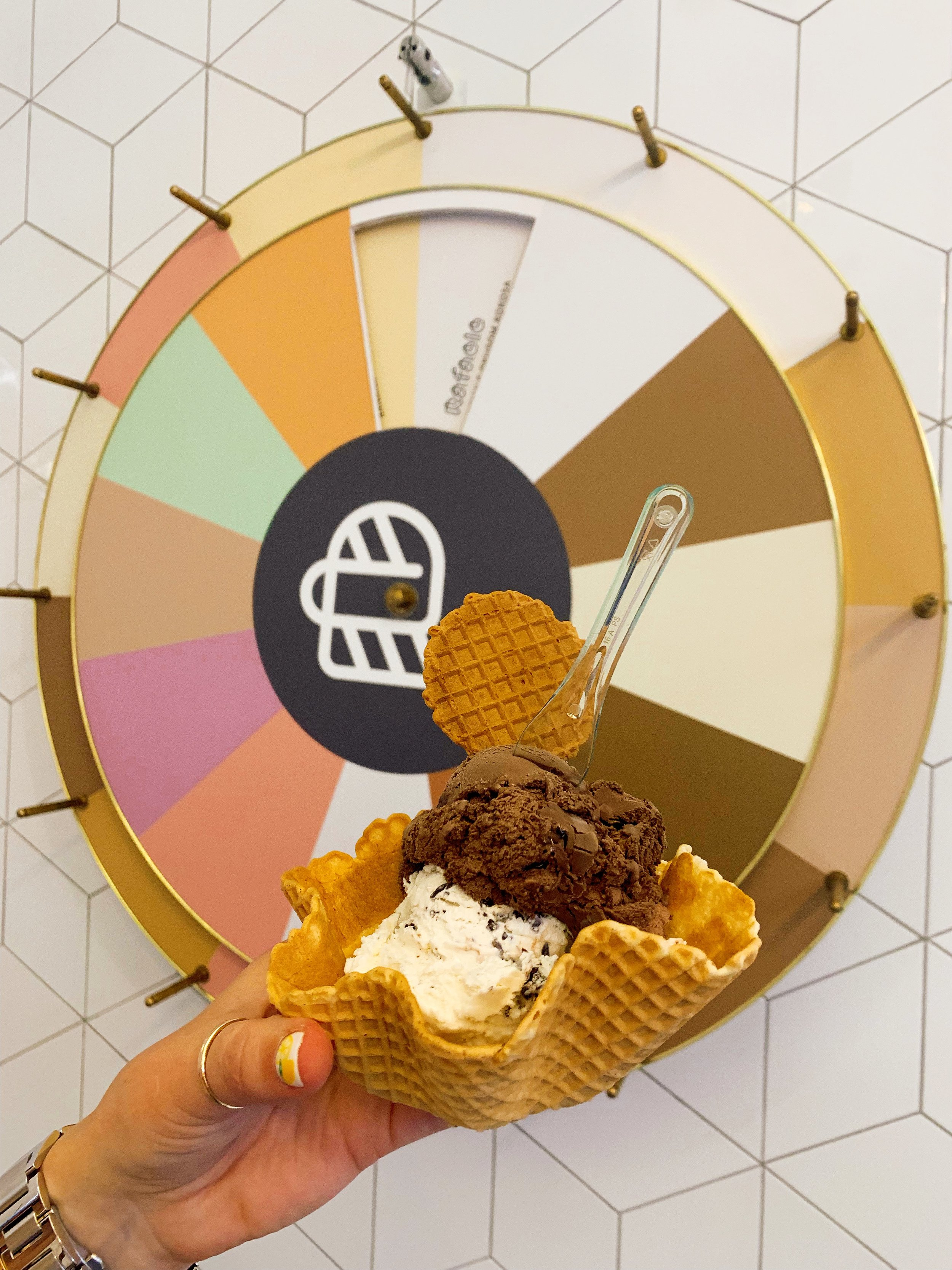 The Wheel Of Flavors
