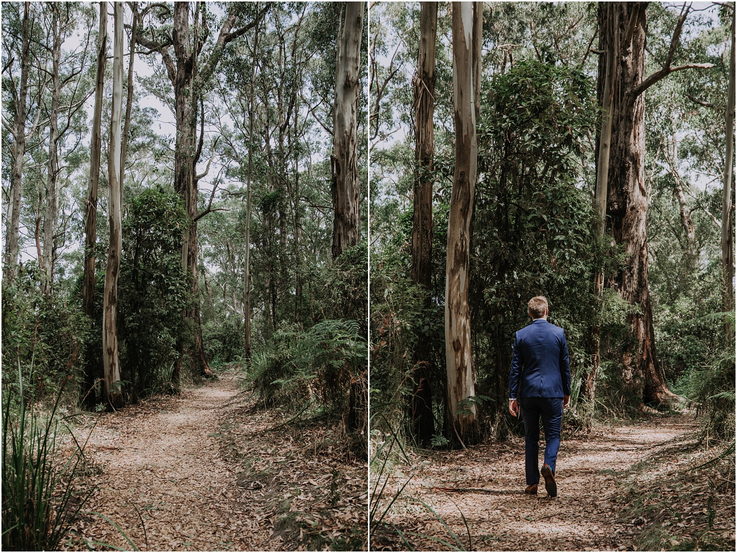 Ainslee and Warwick's elopement at Erskin Falls and the Lorne Beach Pavilion on the Great Ocean Road._0024.jpg