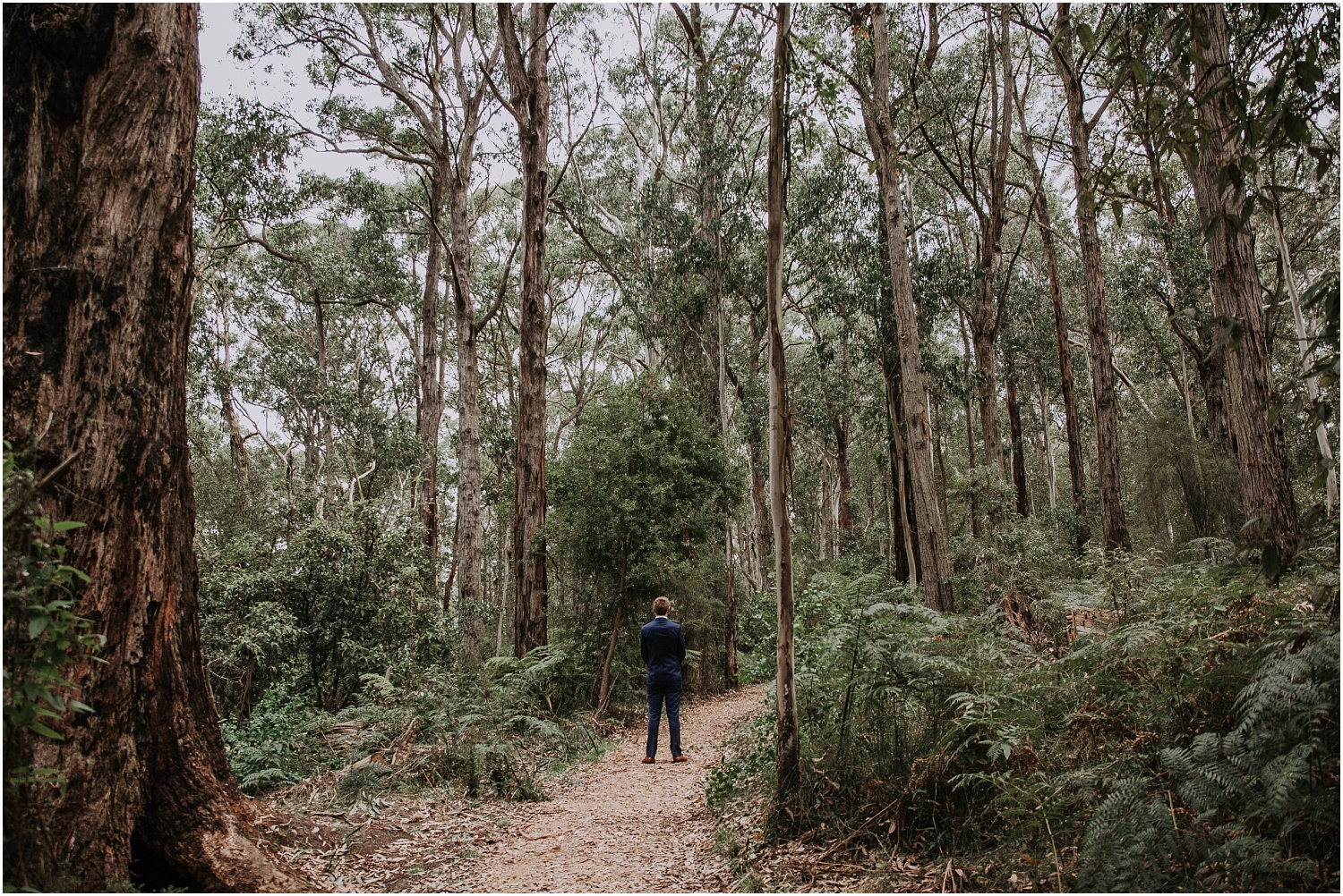 Ainslee and Warwick's elopement at Erskin Falls and the Lorne Beach Pavilion on the Great Ocean Road._0028.jpg