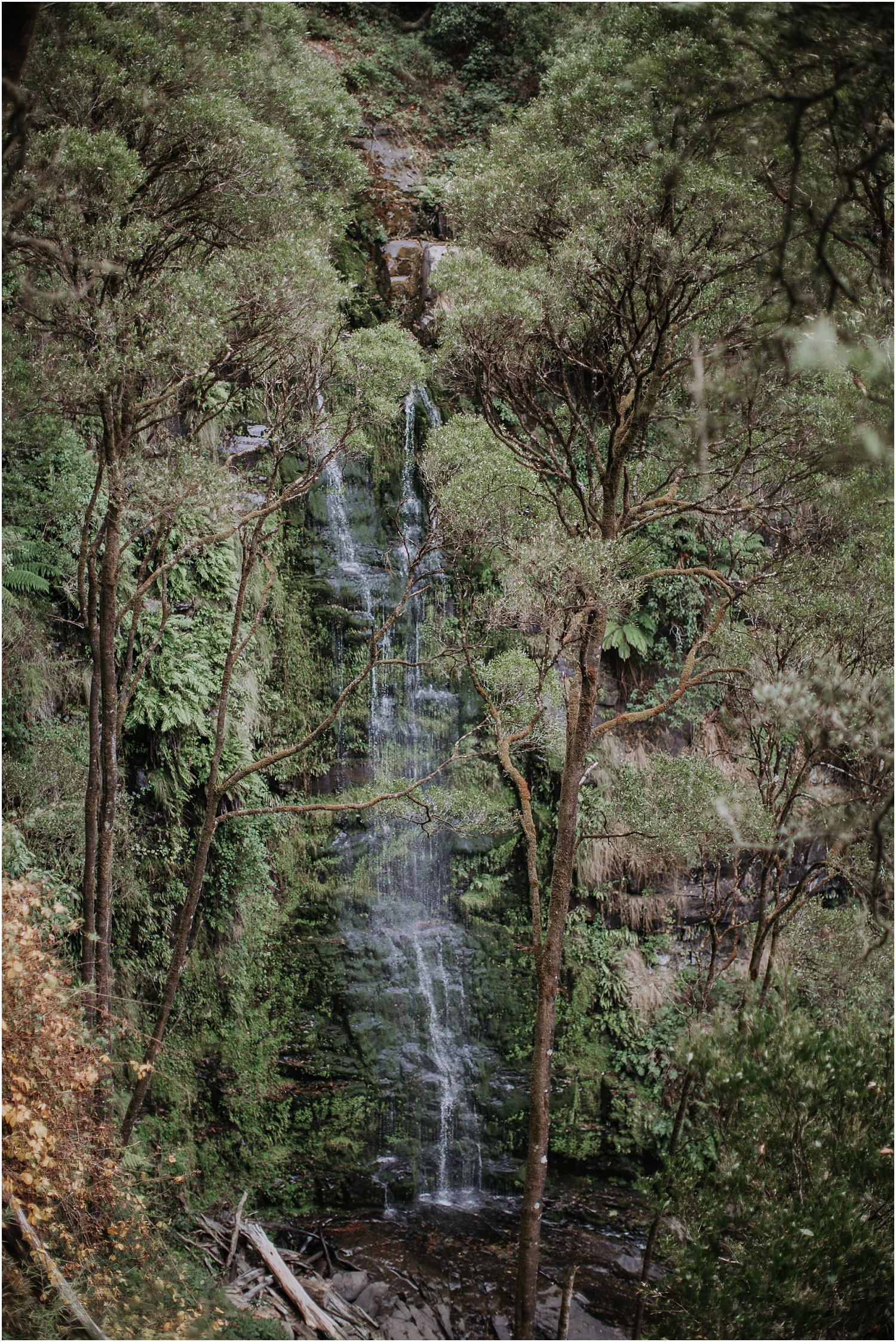 Ainslee and Warwick's elopement at Erskin Falls and the Lorne Beach Pavilion on the Great Ocean Road._0039.jpg