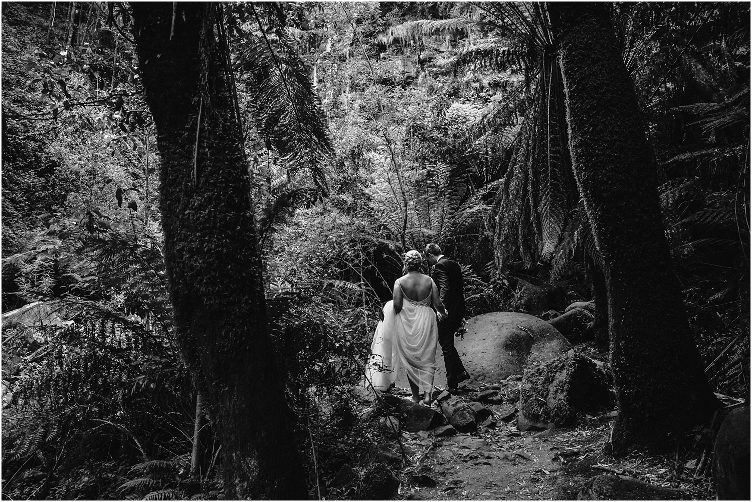 Ainslee and Warwick's elopement at Erskin Falls and the Lorne Beach Pavilion on the Great Ocean Road._0044.jpg