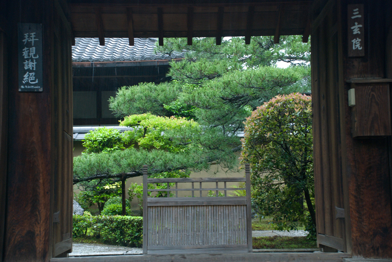 Uji_tea_gardens_1.jpg
