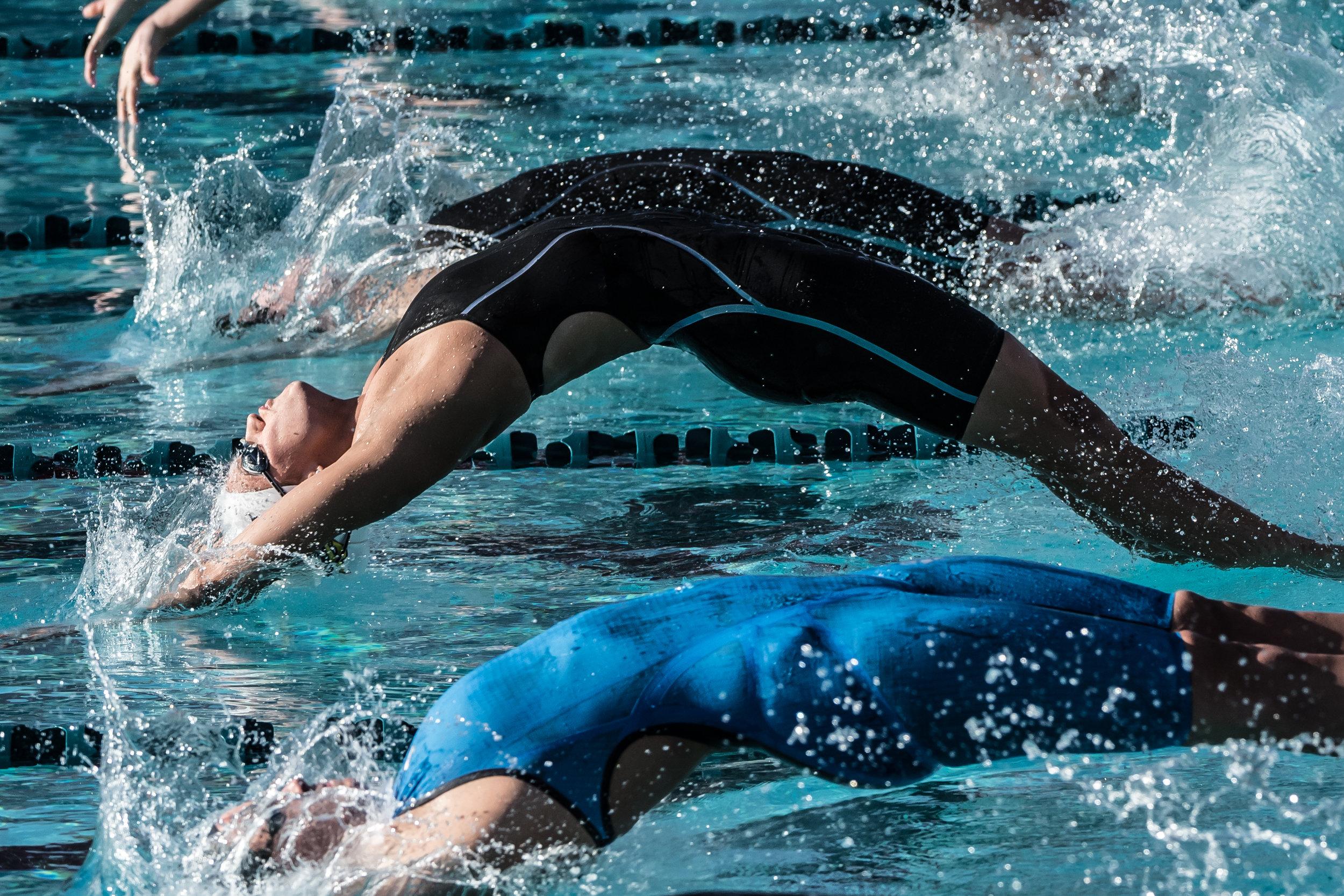 Arena Pro Swim Series Champion